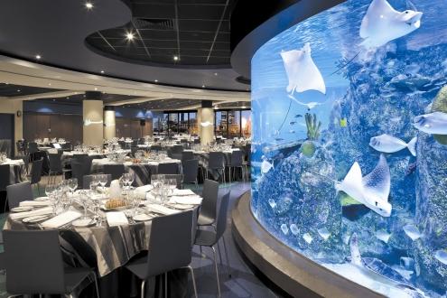 melbourne aquarium wedding