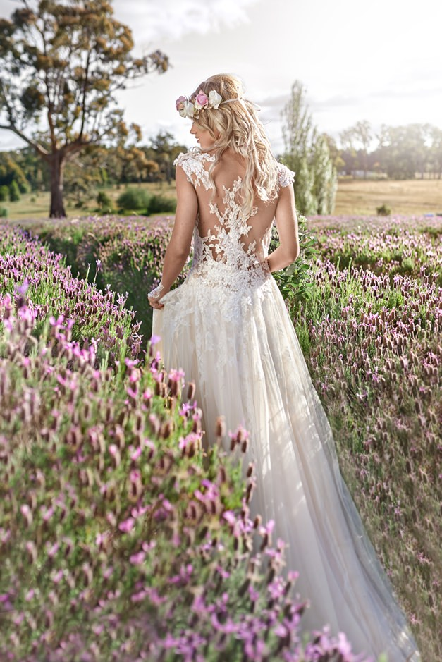 Bride-wanders-through-lavender