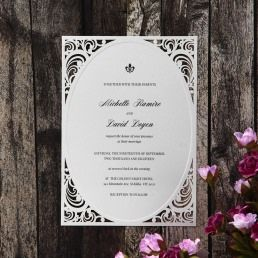 Dashing white embossed frame invite border surrounded by a sophisticated whimsical die cut corner border