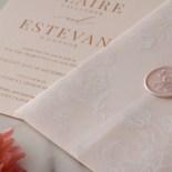 Vellum Wrapped Ensemble - Wedding Invitations - WP-CR07-RG-01-V - 184819
