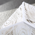 White peacock laser detail, closeup, matte card, cropped