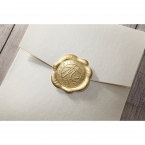 Prosperous Golden Pocket bridal shower invitations IAB11045-B_2