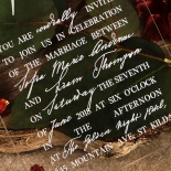 Acrylic Modern Romance Wedding Invite Design