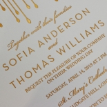 Luxe Intrigue Wedding Invitation Card Design